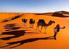 荒漠和沙漠的区别是什么,盘点世界十大荒漠排行/
